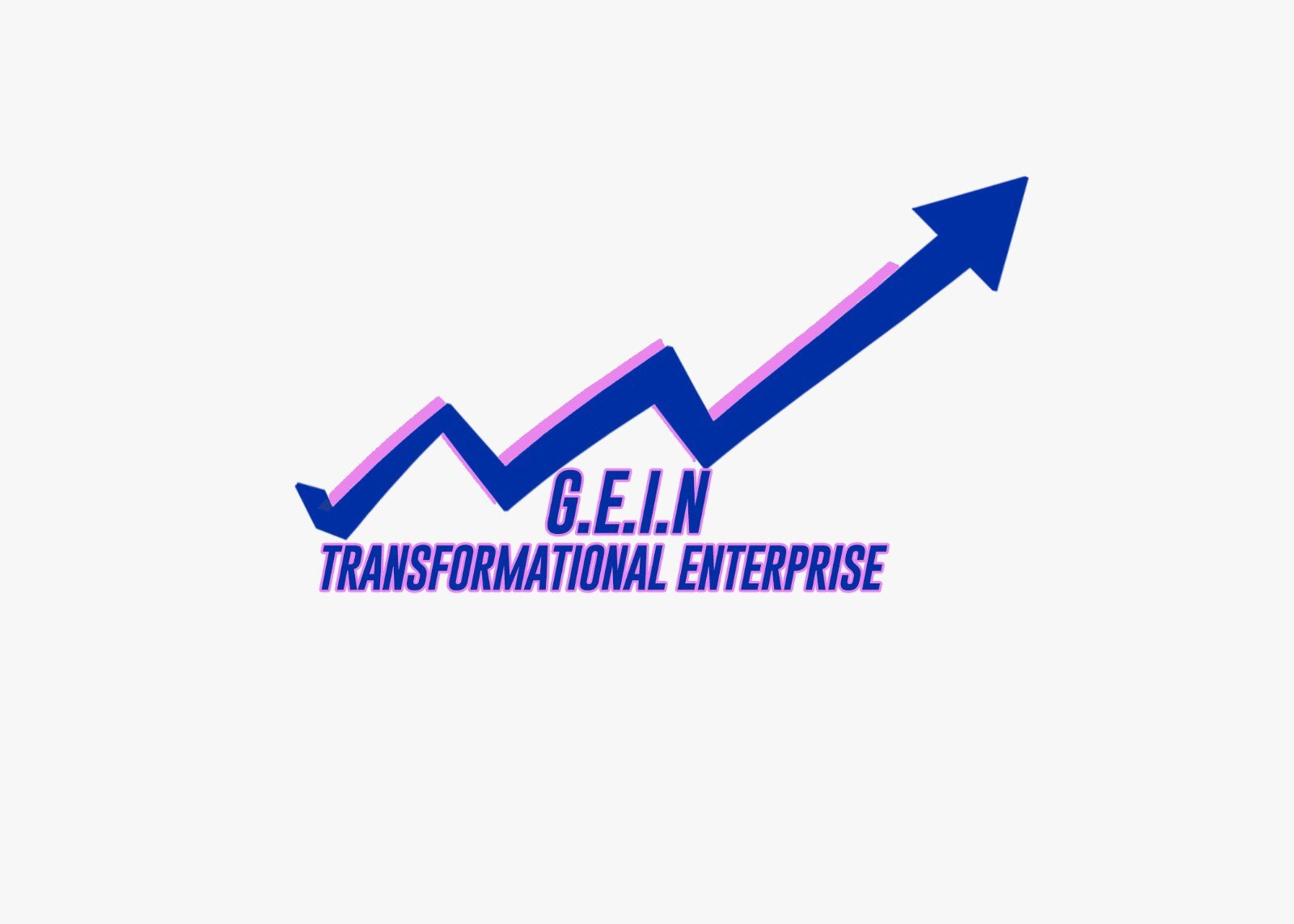 G.E.I.N Transformational Enterprise